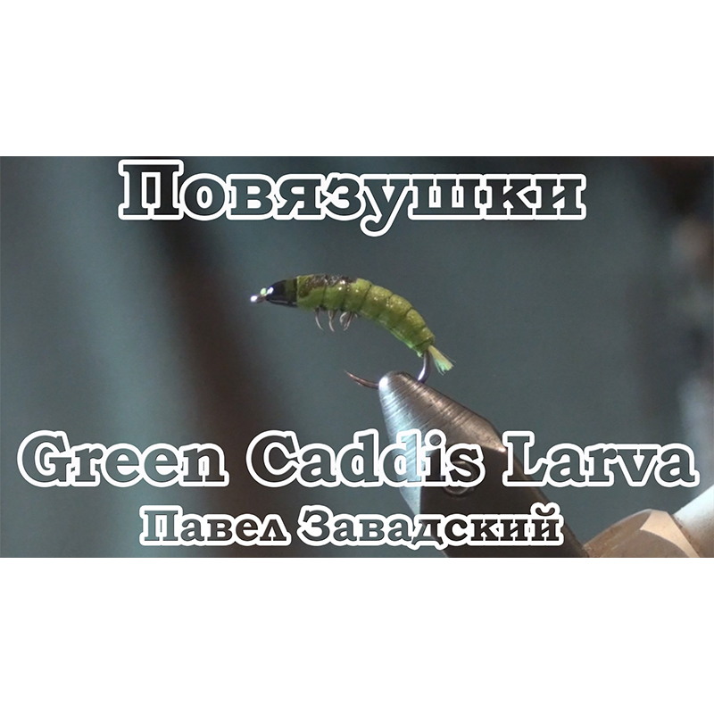 Повязушки. Green Caddis Larva
