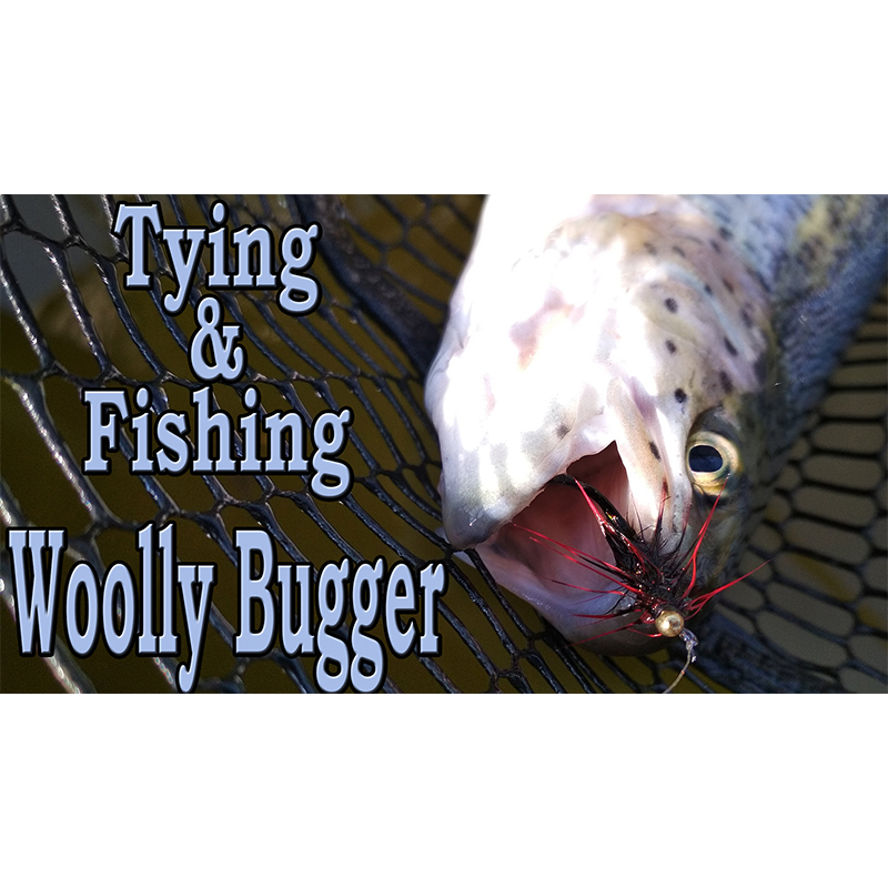 Tying & Fishing. Woolly Bugger. Trout area fishing